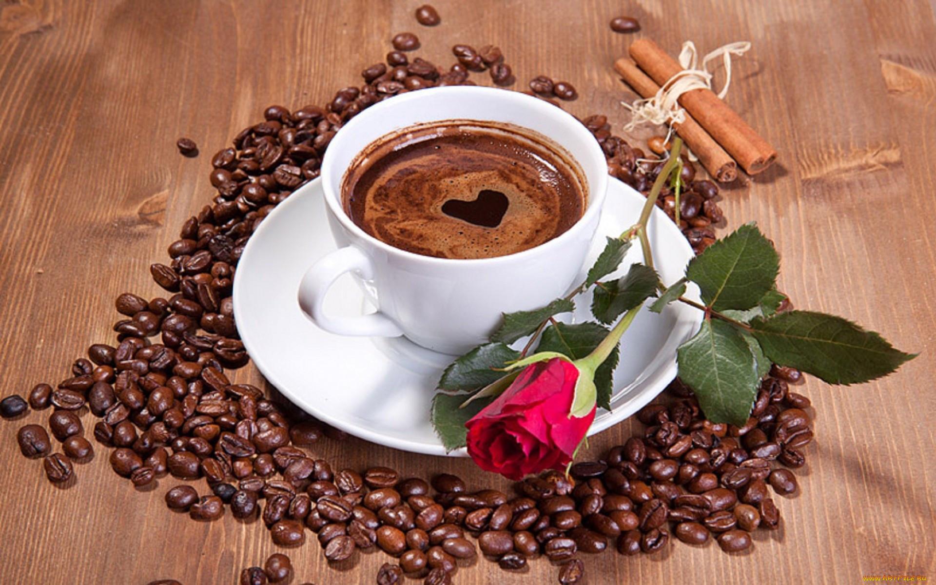 меня очень красивые картинки про кофе моя учеба нашей
